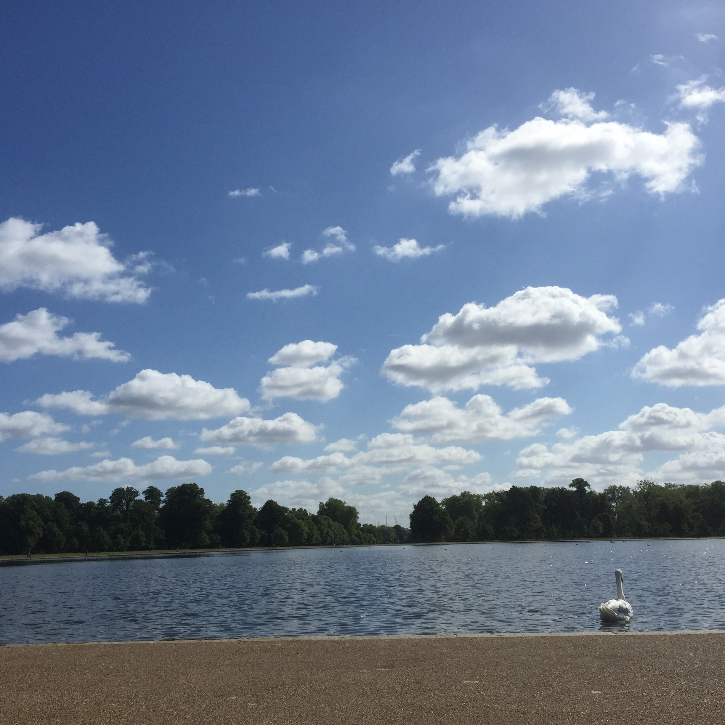 Saturday morning in Hyde Park